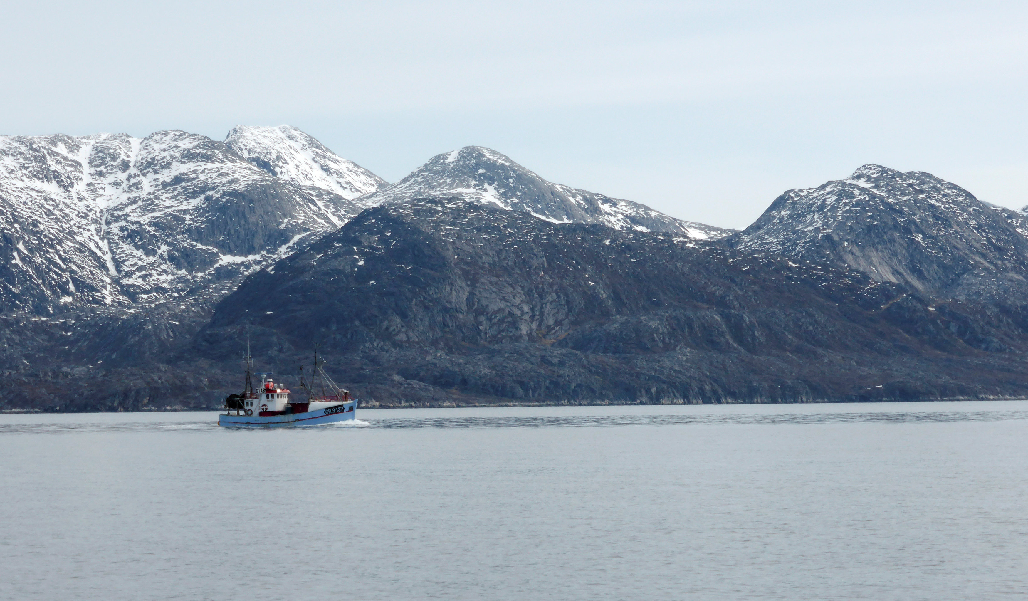 Greenland moves to join North Atlantic mackerel fishing agreement