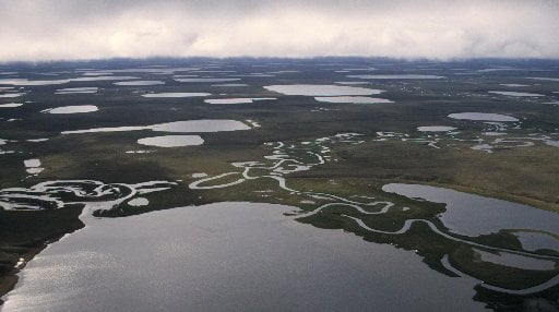 Federal land agency wants to soften blow of development before it begins on part of Alaska's North Slope