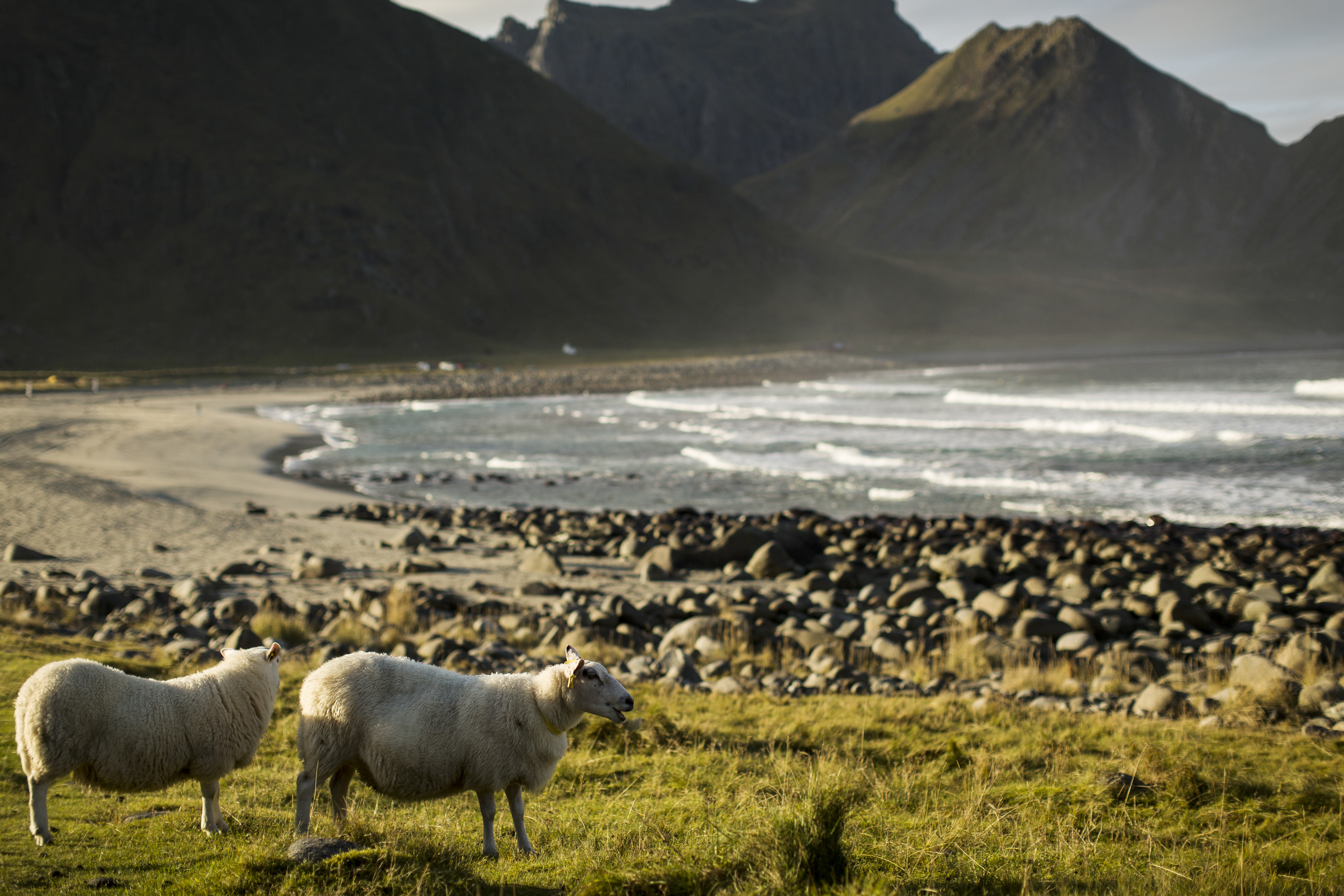 Why the prospect of drilling off Norway's Lofoten is raising tensions