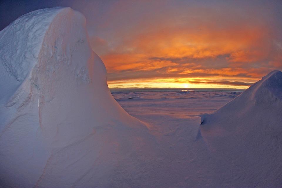 Brutal sailors, Arctic setting make 'North Water' a harrowing read