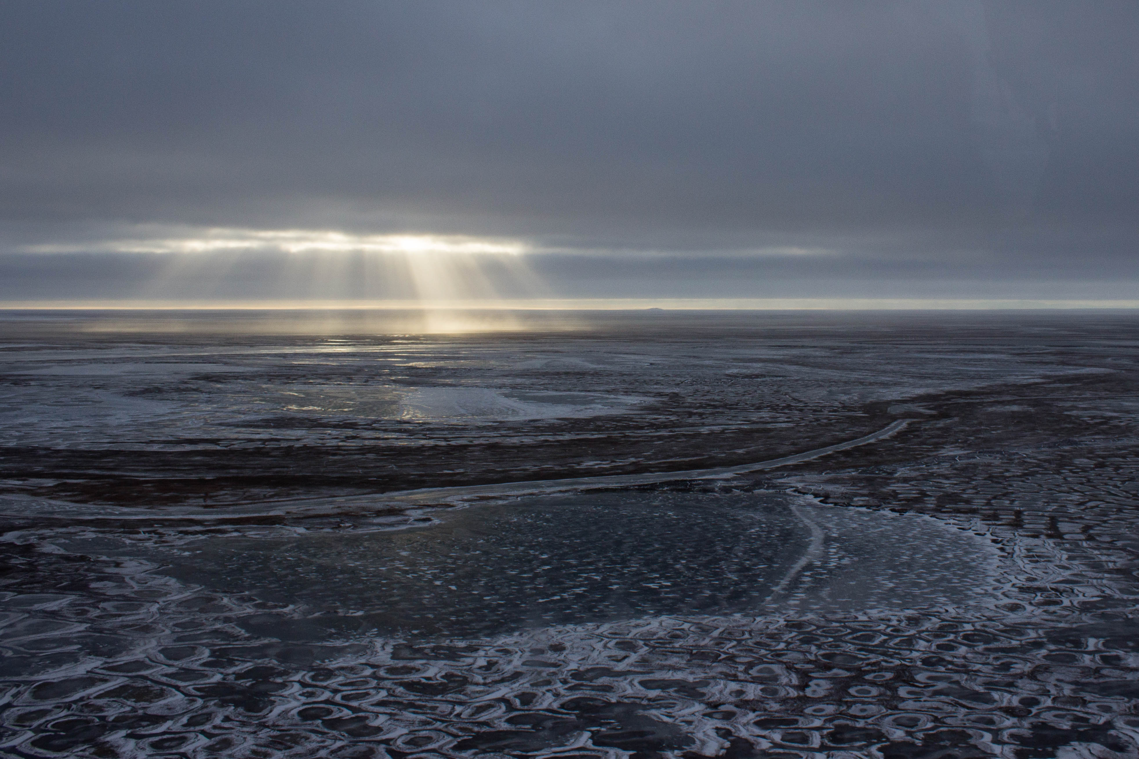Change in the Arctic this year was unlike any ever seen before, scientists say