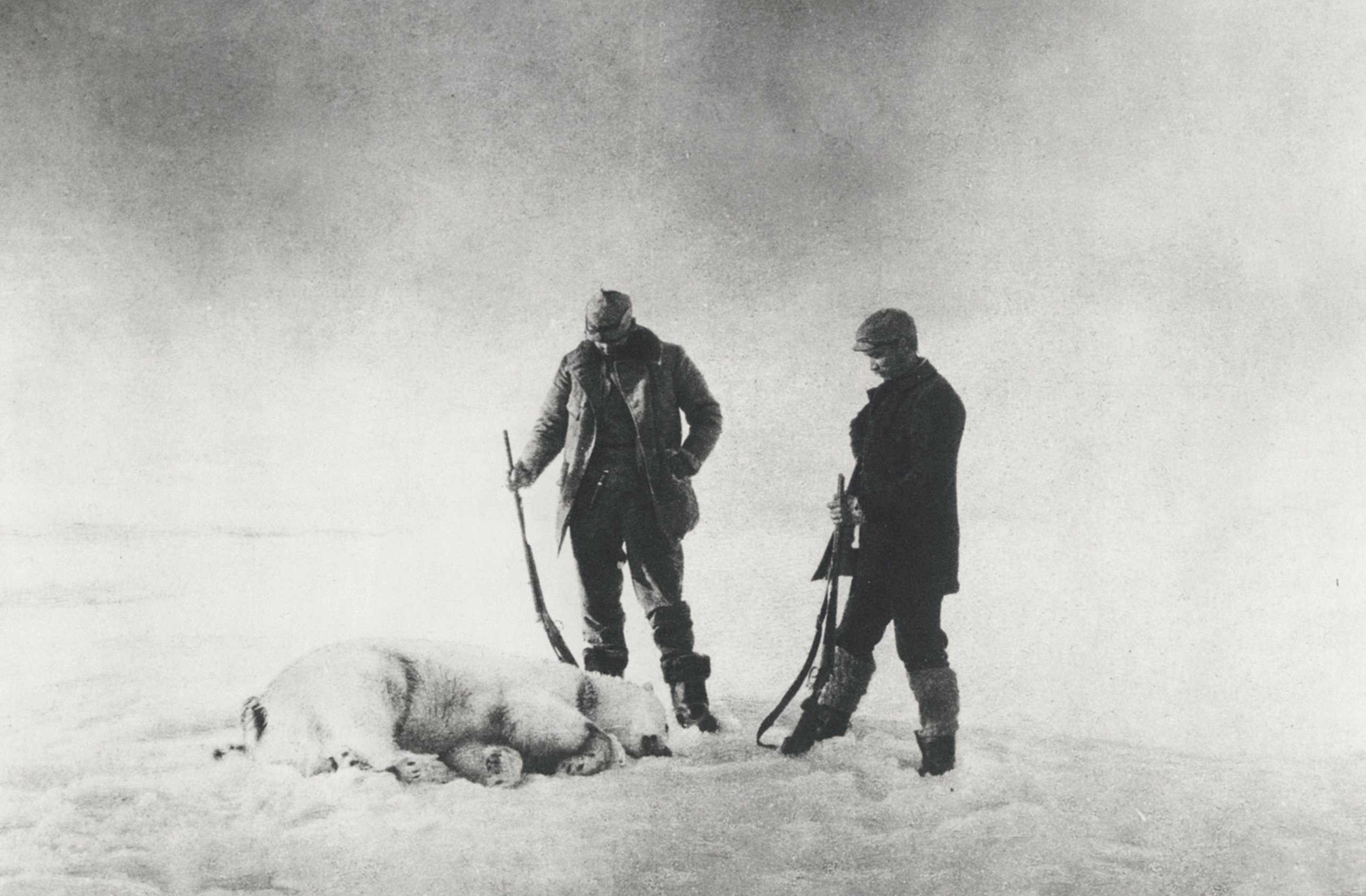 Eating the white bear: An Arctic icon's place on the menu