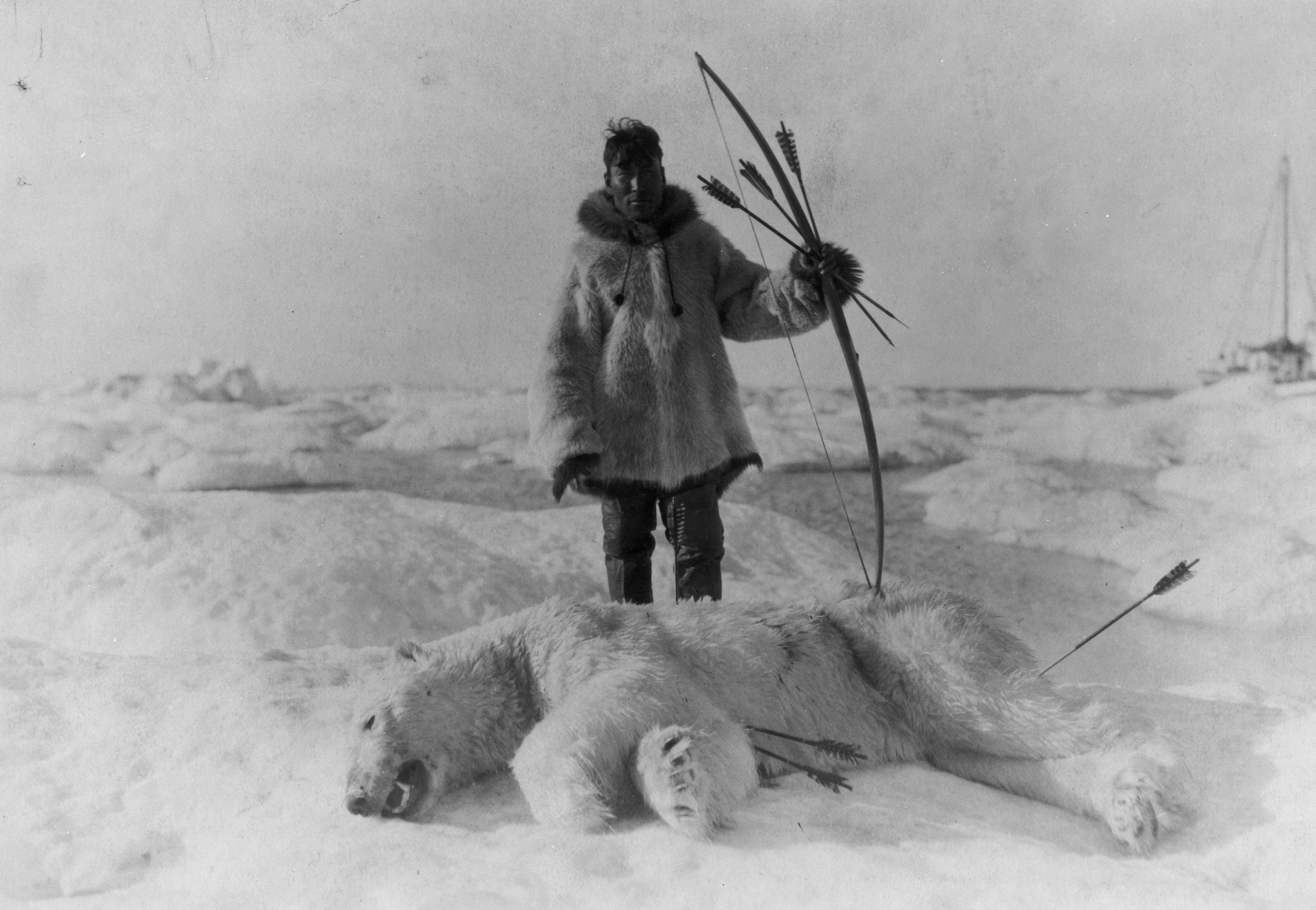 inuit of the arctic The inuit have lived in alaska for at least the last 7,000 years and have since migrated all around the arctic the inuit adapted to their environment, and because the environment in the arctic is so unique, the people that inhabit it are masters of surviving in one of the harshest environments on earth.
