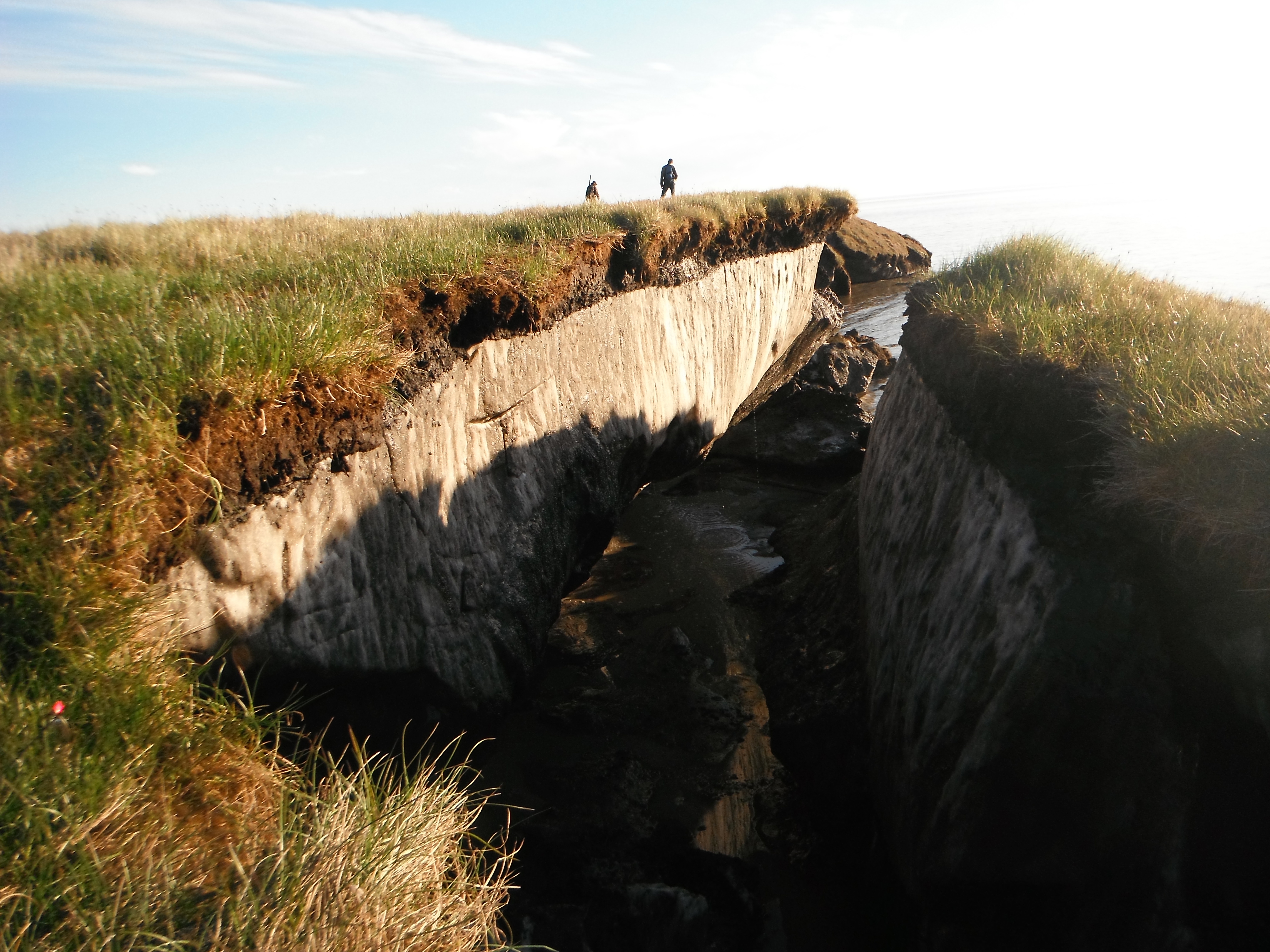 Coastal erosion reveals the extent of ice-rich permafrost underlying active layer on the Arctic Coastal Plain in the Teshekpuk Lake Special Area of the National Petroleum Reserve - Alaska, in this July 2011 photo. (Brandt Meixell / USGS)