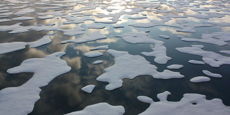 Here's how much of the Arctic you're personally responsible for melting