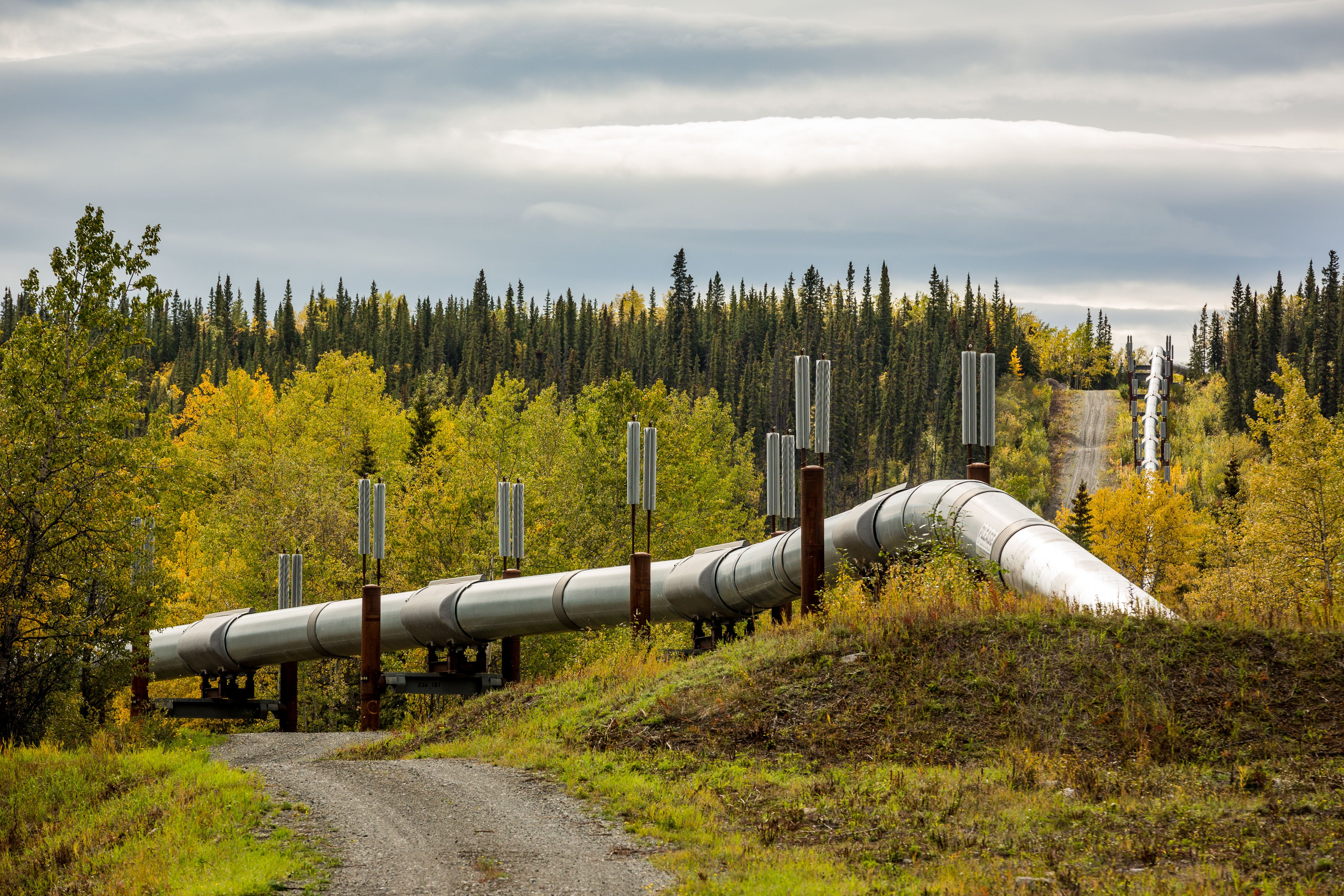 Alaska pipeline can operate without offshore Arctic oil