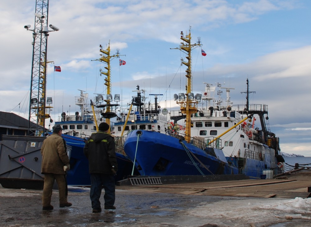 Russian fisheries say they will safeguard Arctic stocks