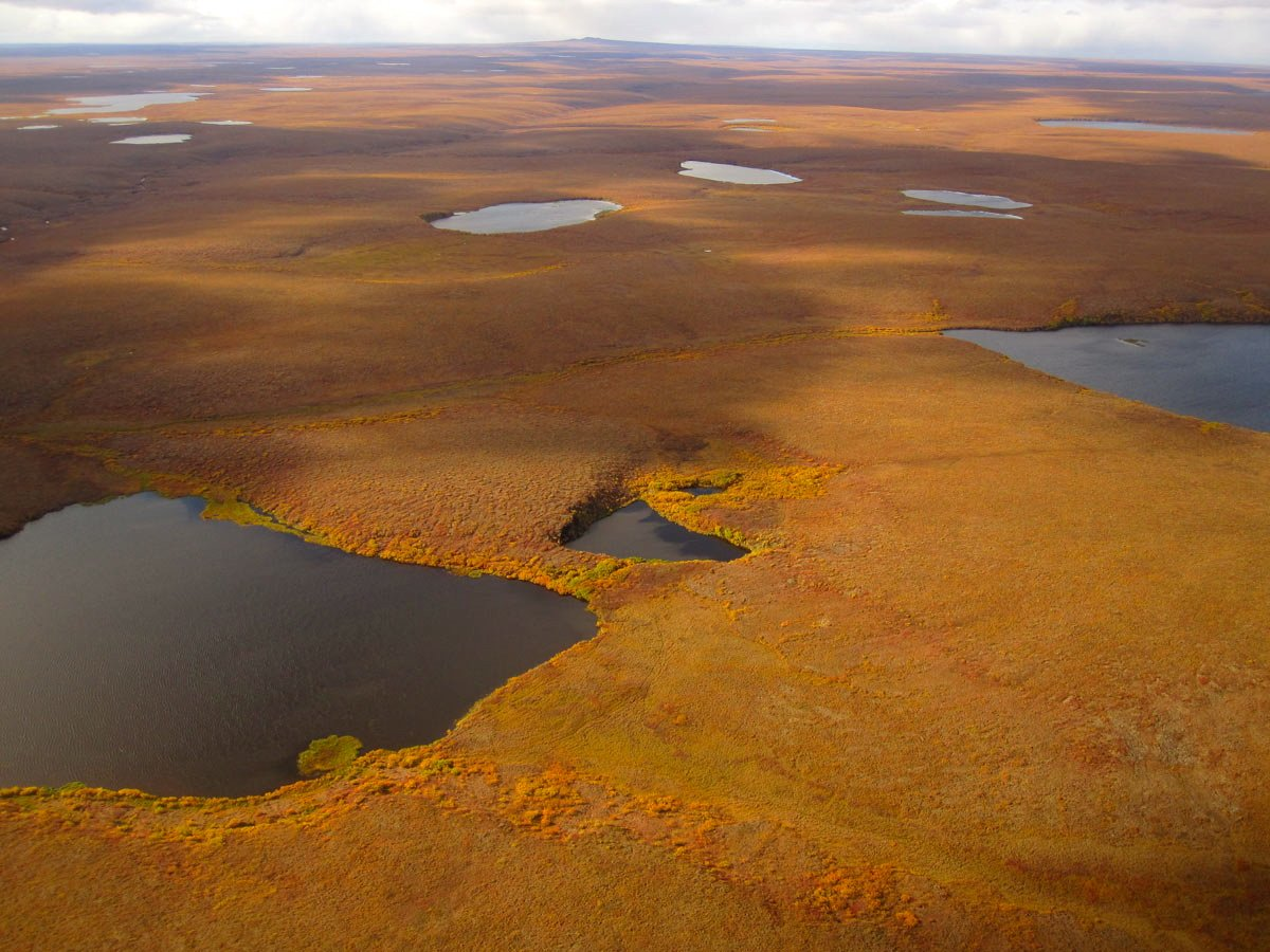 Why lakes in Alaska's Arctic national parks are disappearing — sometimes in a matter of days
