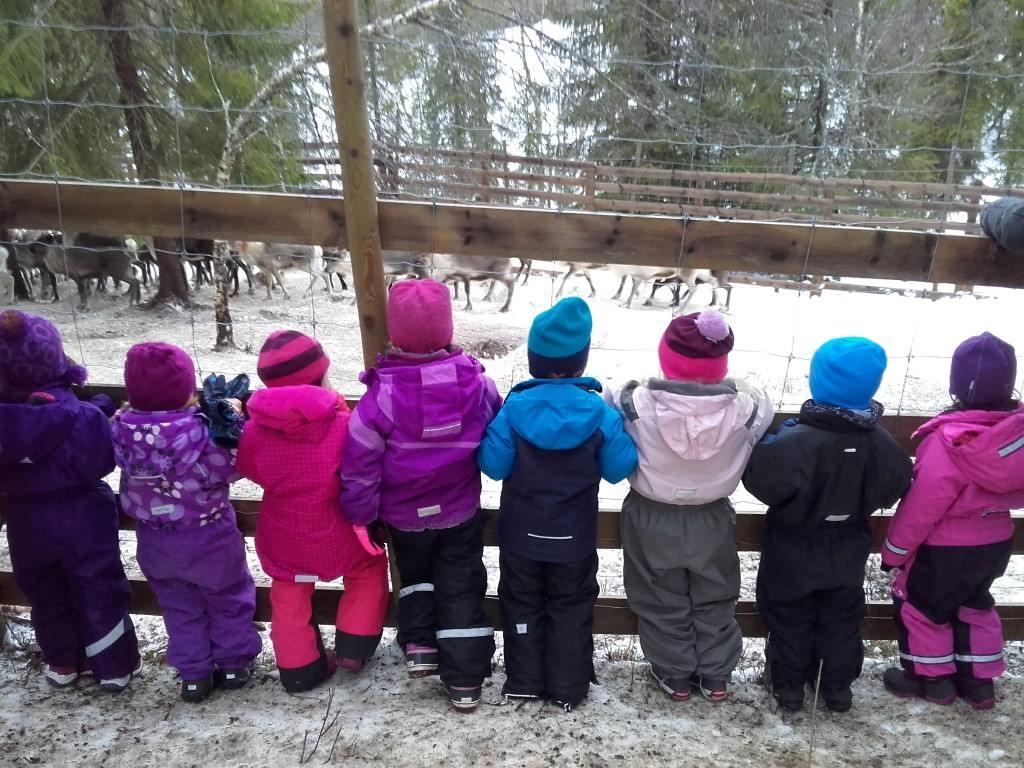 A Norwegian preschool is under fire for its latest field trip – to a reindeer slaughterhouse