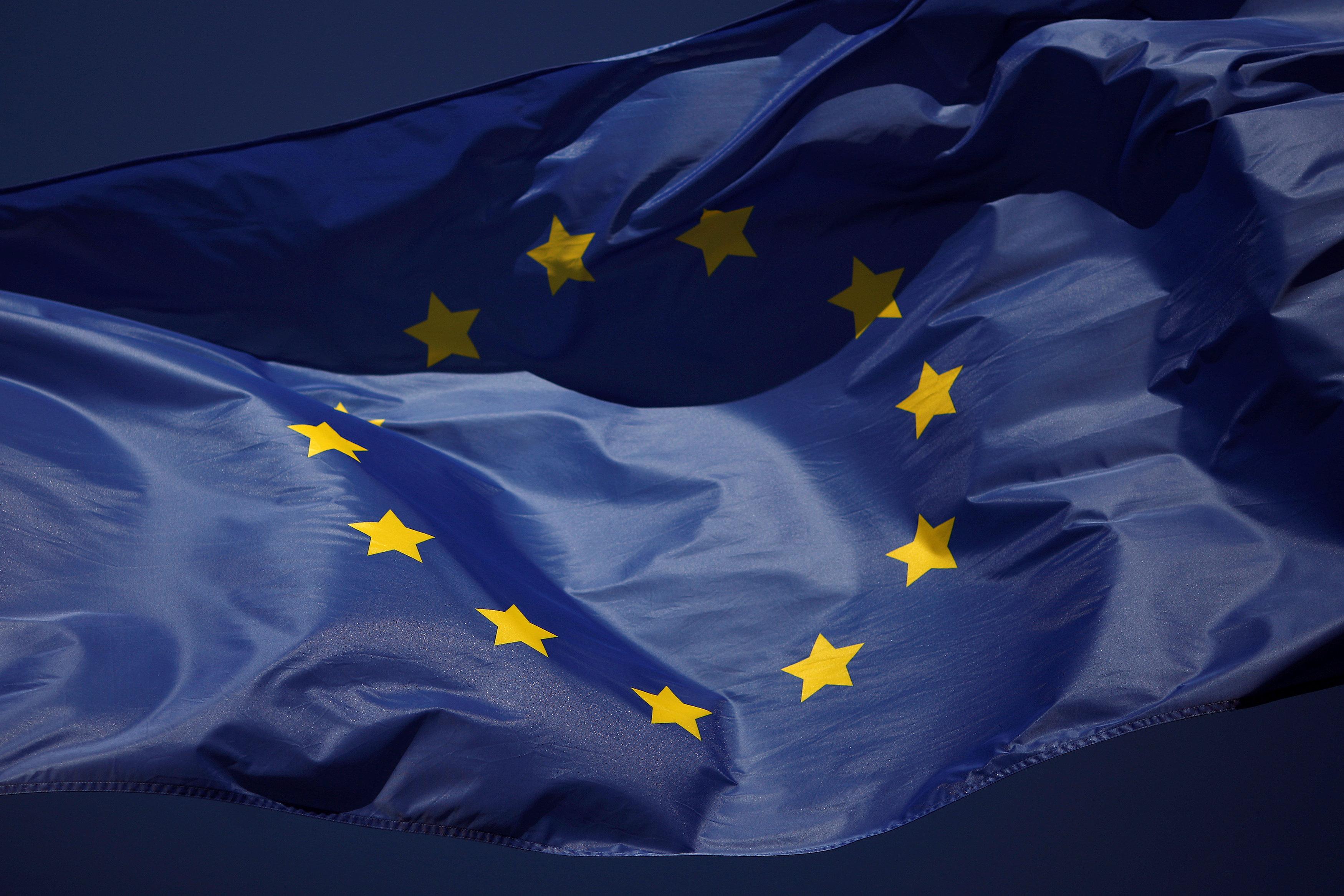 In fresh poll, Icelanders reject prospect of EU membership by wide margins