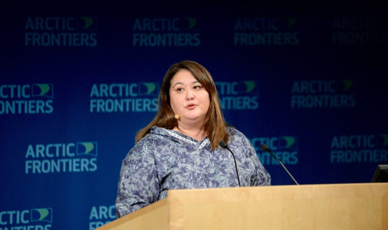 Arctic Economic Council has 'made light-years of progress,' says chair