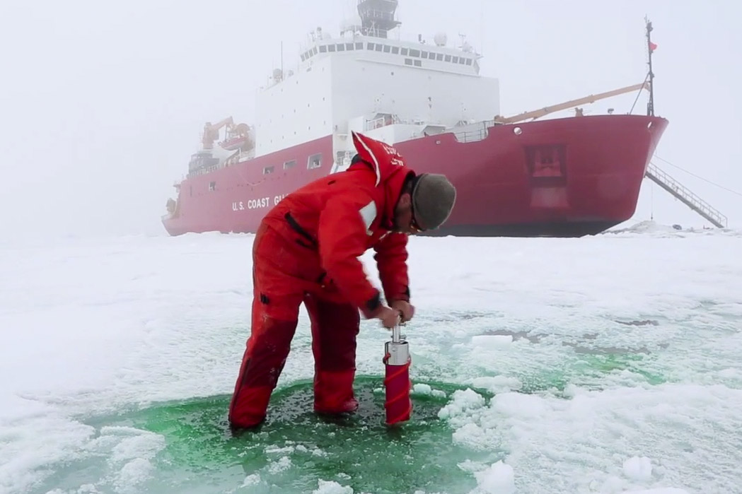 Thinning Arctic sea ice lets in light, prompting algae blooms, study says