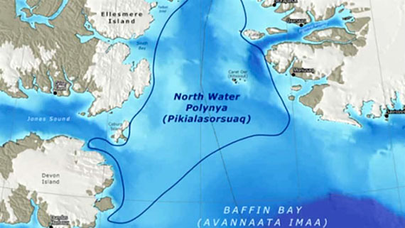 Ottawa silent on protecting Arctic's North Water polynya from toxic space junk