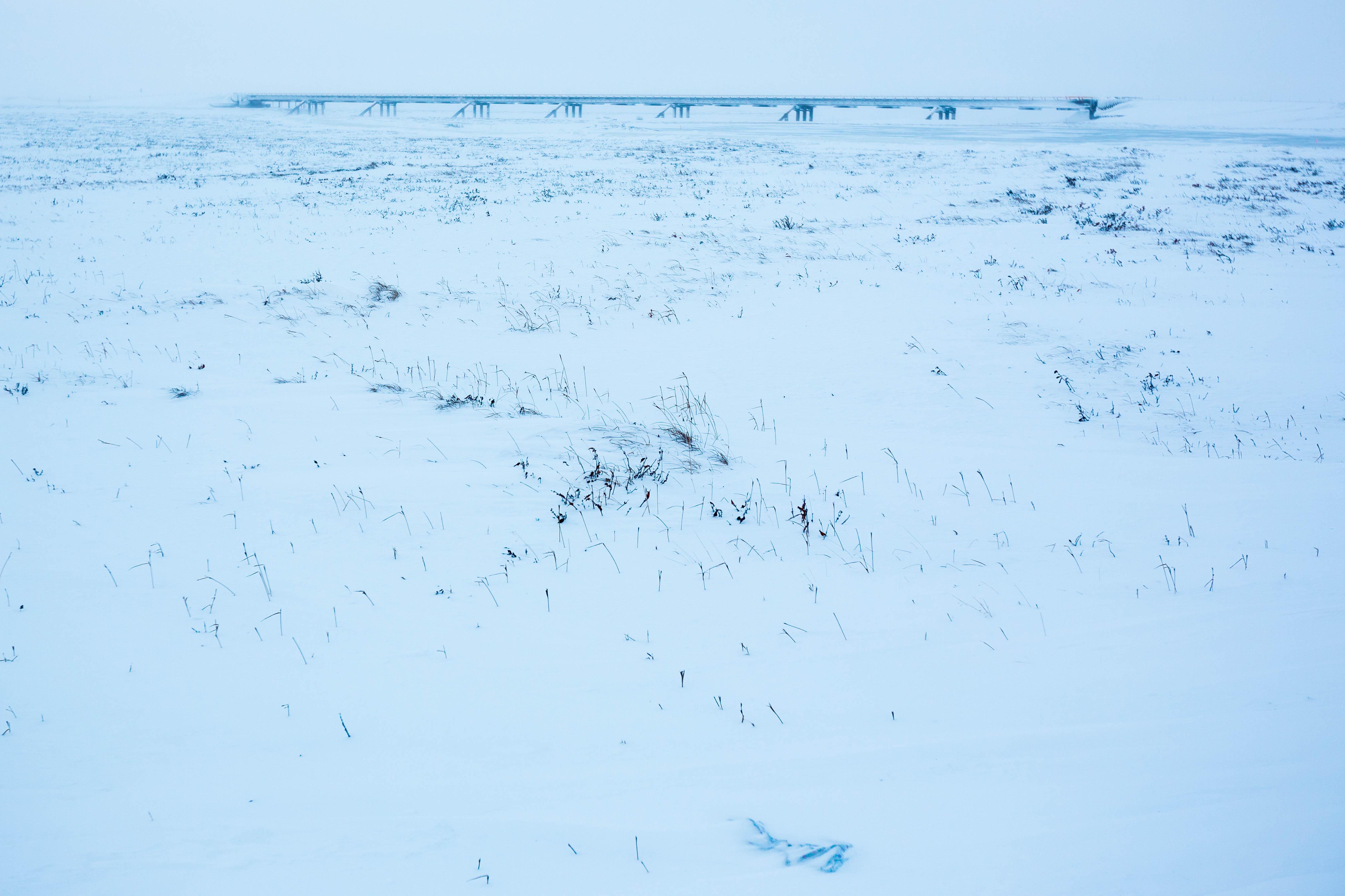 Australian oil company buys into Arctic Alaska fields
