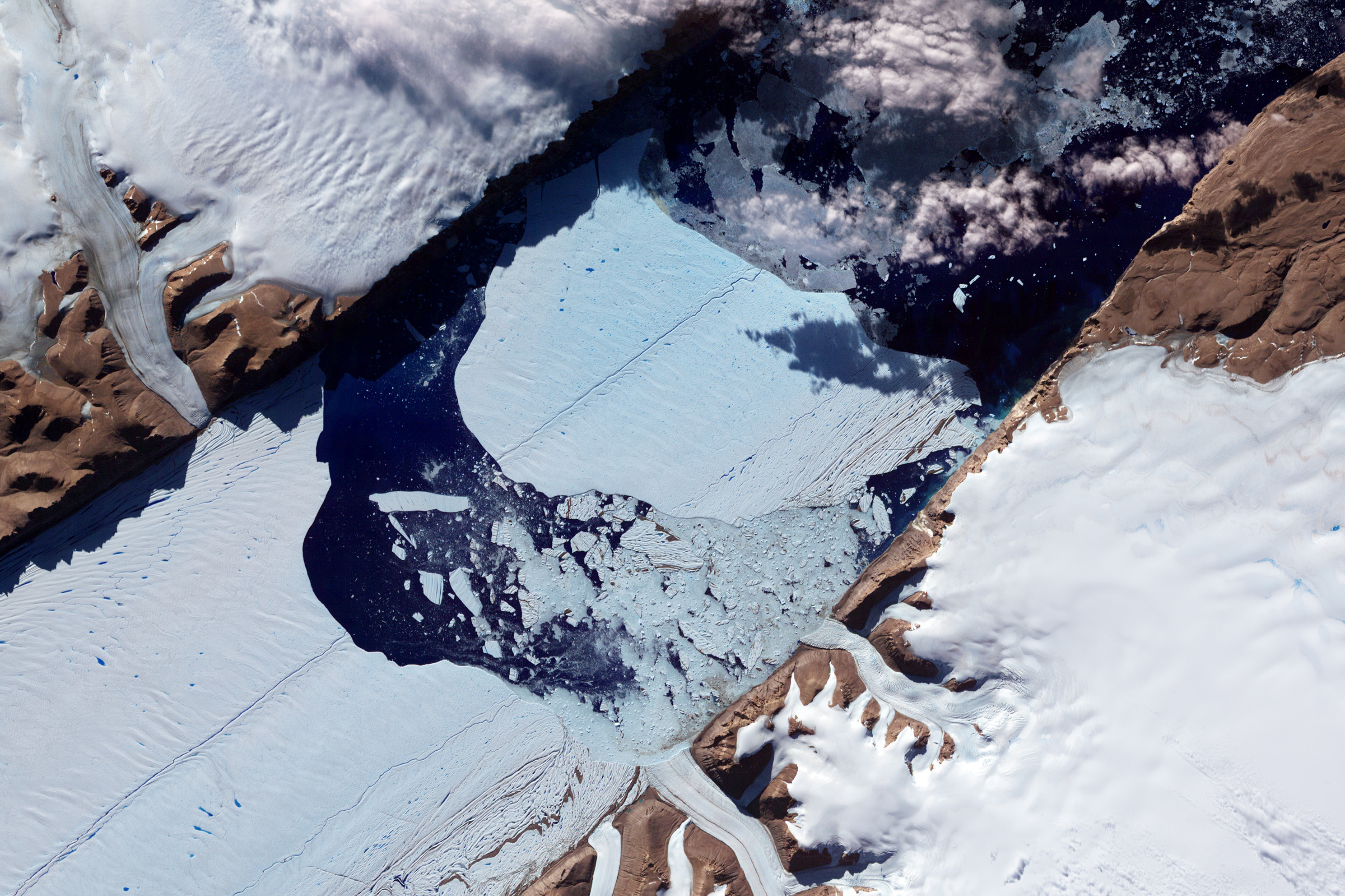 In July 2012, a massive ice island broke free of the Petermann Glacier in northwestern Greenland. On July 16, the giant iceberg could be seen drifting down the fjord, away from the floating ice tongue from which it calved. On July 21, 2012, the Advanced Spaceborne Thermal Emission and Reflection Radiometer (ASTER) on NASA's Terra satellite captured this image of the iceberg's continuing journey. This image has been rotated and north is toward the right. ASTER combines infrared, red, and green wavelengths of light to make false-color images that help to distinguish between water and land. Water is blue, ice and snow vary in color from pale blue to white, and land areas appear brick red and brown. Clouds in the scene cast dark shadows onto the iceberg surface. Similar surface cracks appear on both the Petermann Glacier and the newly formed ice island. Nearly two years earlier in July 2010, another large iceberg calved from the Petermann Glacier. That iceberg was estimated at roughly 97 square miles (251 square kilometers). The 2012 iceberg is estimated to be about half as big. This latest calving occurred farther upstream on the Petermann, but nevertheless occurred along a rift that appeared in satellite imagery in 2001. Ted Scambos of the National Snow and Ice Data Center observed melt ponds on the iceberg surface, but stated that the Petermann calving was likely associated with ocean currents rather than surface melt. (Jesse Allen and Robert Simmon / NASA Earth Observatory image using data from NASA / GSFC / METI / ERSDAC / JAROS and U.S./Japan ASTER Science Team.)