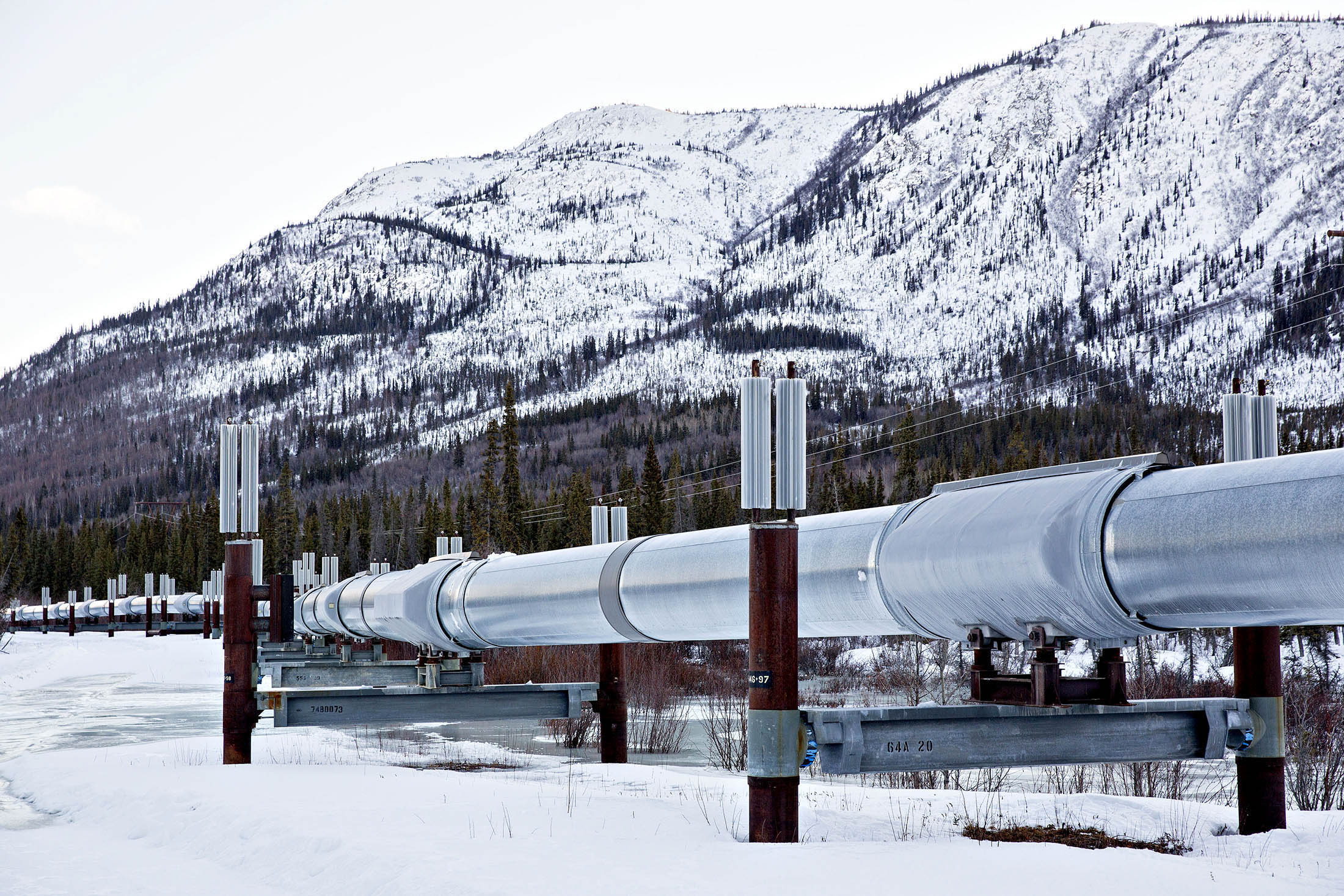 More Arctic oil flowed through the trans-Alaska pipeline this year than last