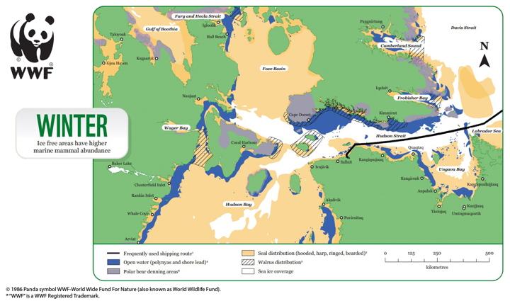 New nautical maps identify Nunavut wildlife hazards for ships