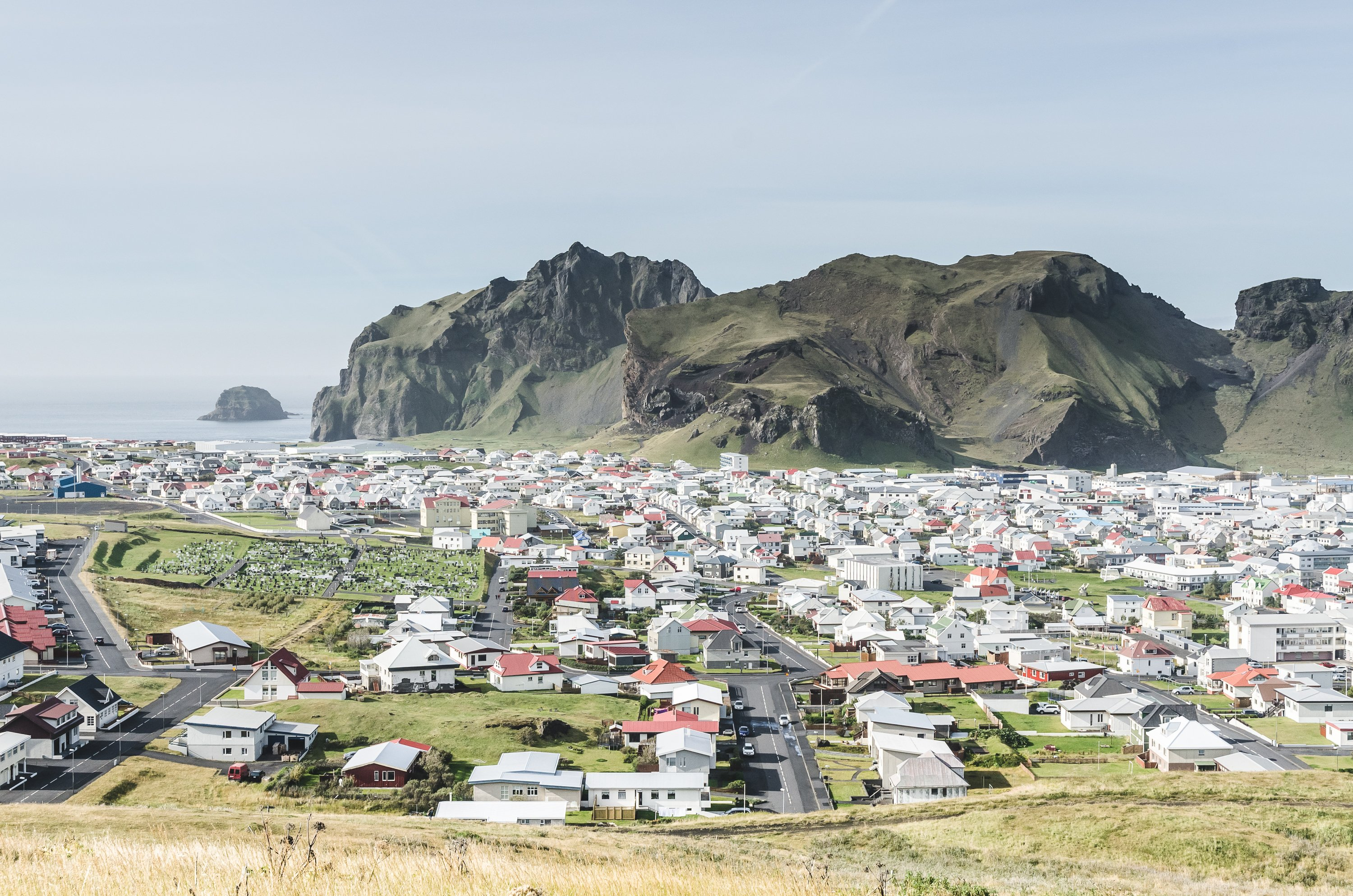 Iceland's Westman Islands could become home to new whale sanctuary