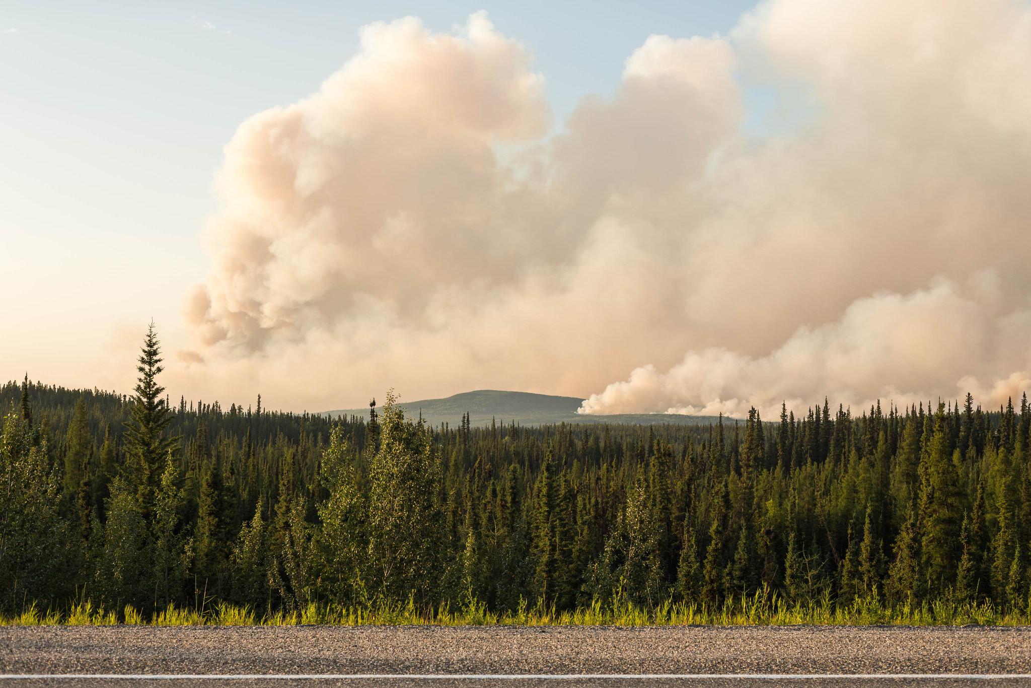 A wildfire burns near the Alaska Highway south of Watson Lake, Yukon on Sunday, July 5, 2015. (Loren Holmes / ADN)