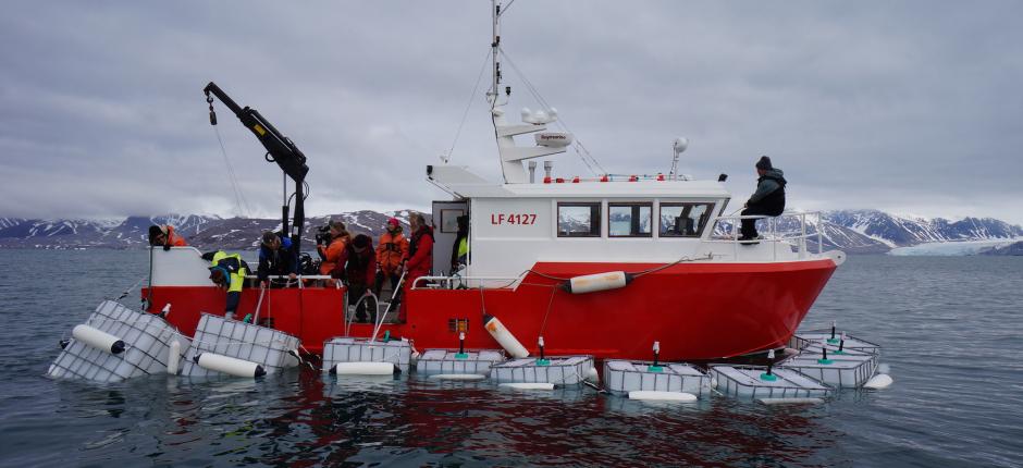 Norway plans to establish an Arctic maritime-research institute in Tromsø