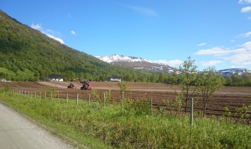 Project aims at reestablishing vegetable production in Norway's Arctic