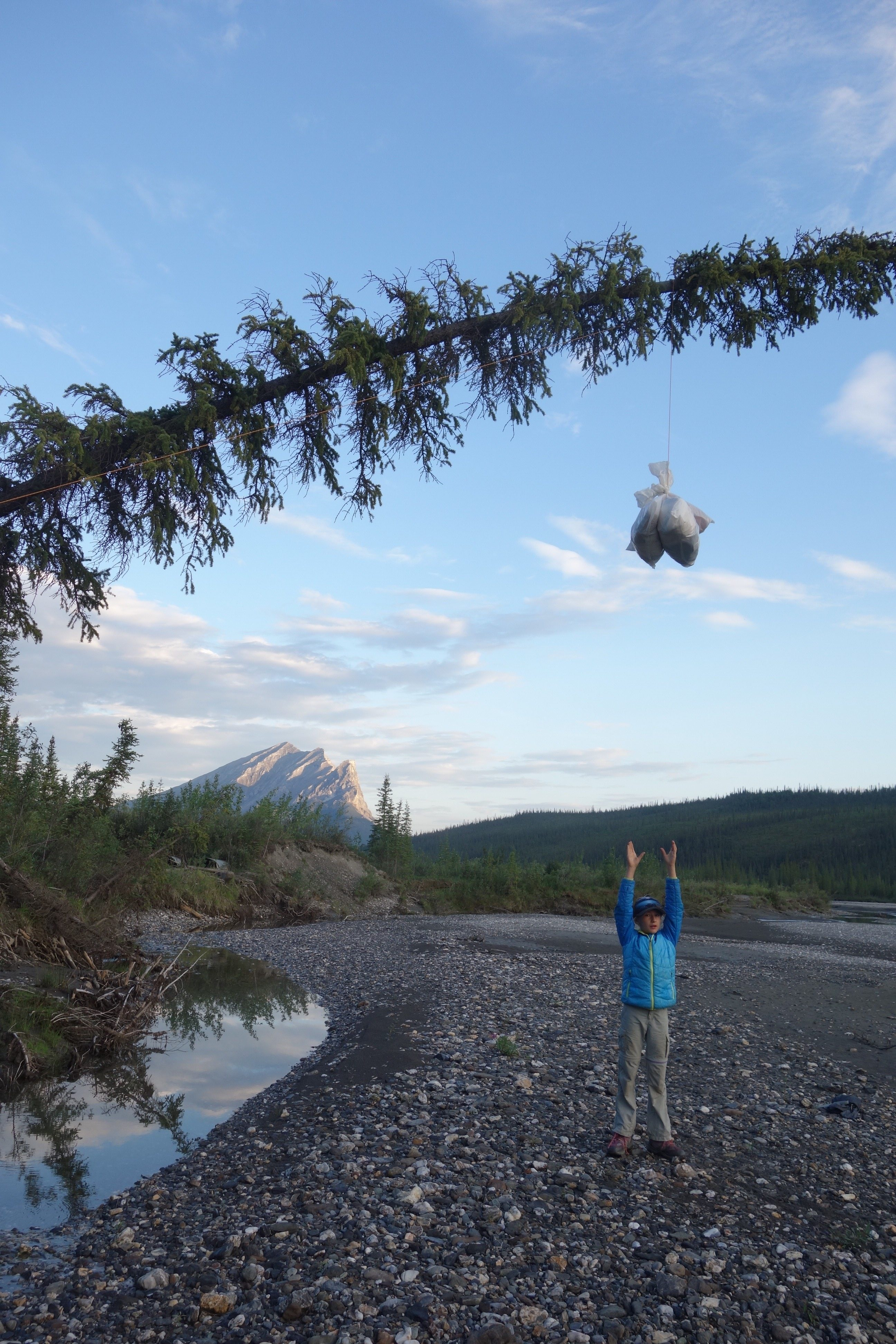 Ten-year-old Anna Rozell shows a food storage method available at a campsite near the northern treeline in Alaska. (Ned Rozell)