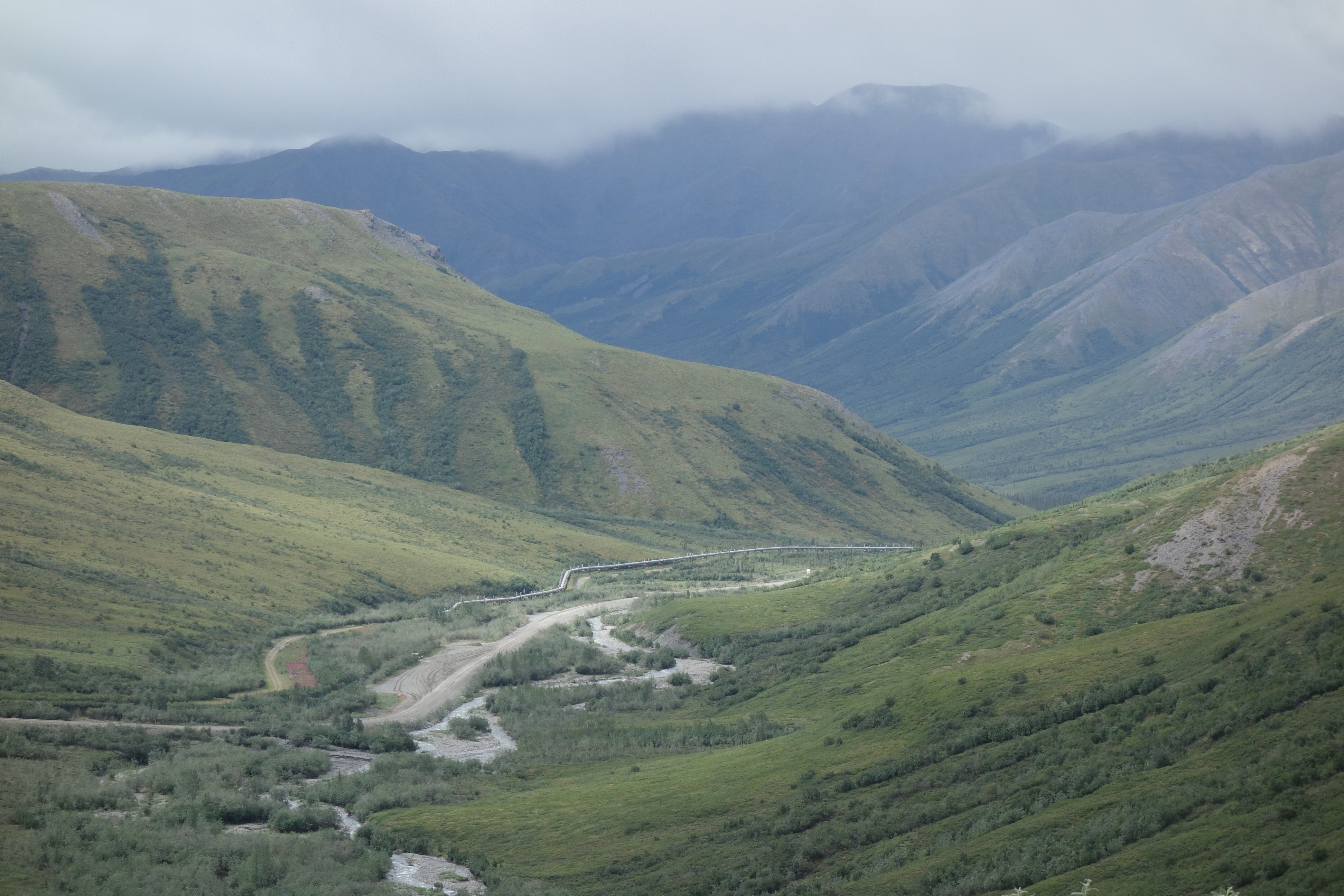 The last forested valley on North America's road system, at the base of Chandalar Shelf on the Dalton Highway. (Ned Rozell)