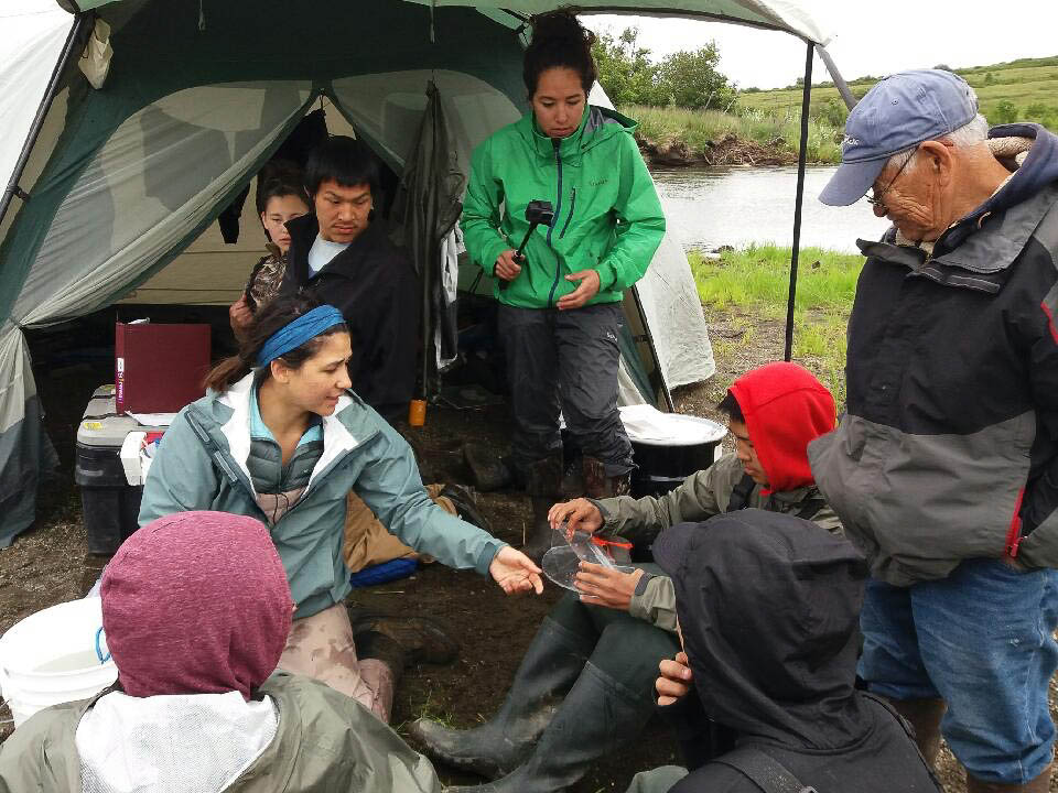 Camp aims to create homegrown scientists on the Yukon-Kuskokwim Delta