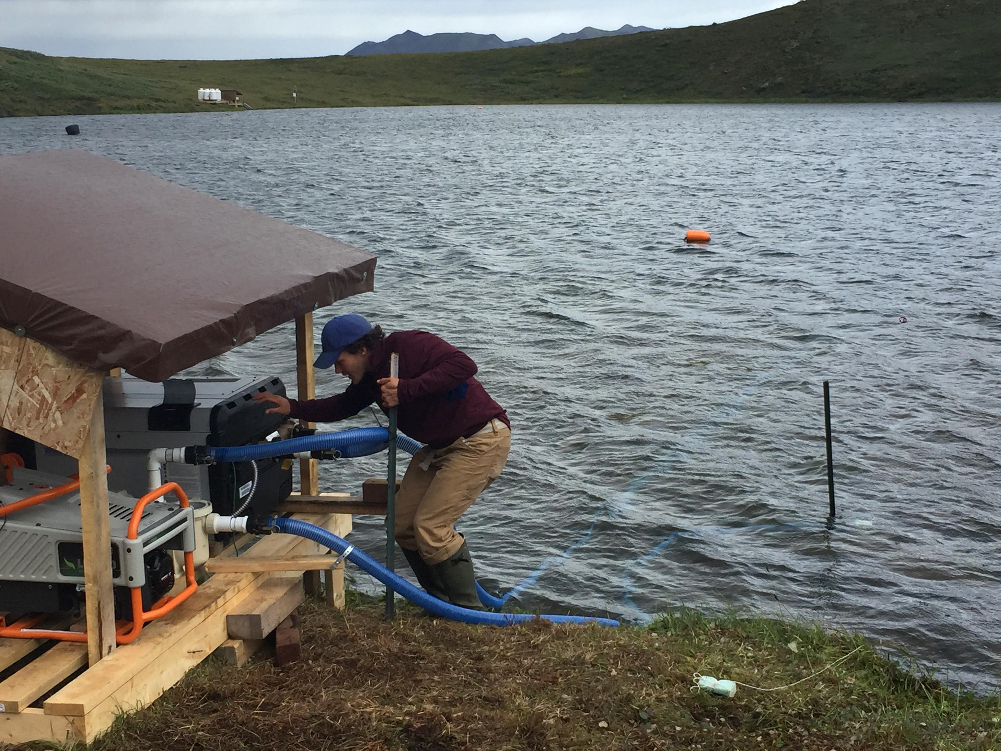 Nick Barrett works on the swimming pool heater used to heat Fog 1 lake on August 2, 2017. (Kelsey Lindsey)