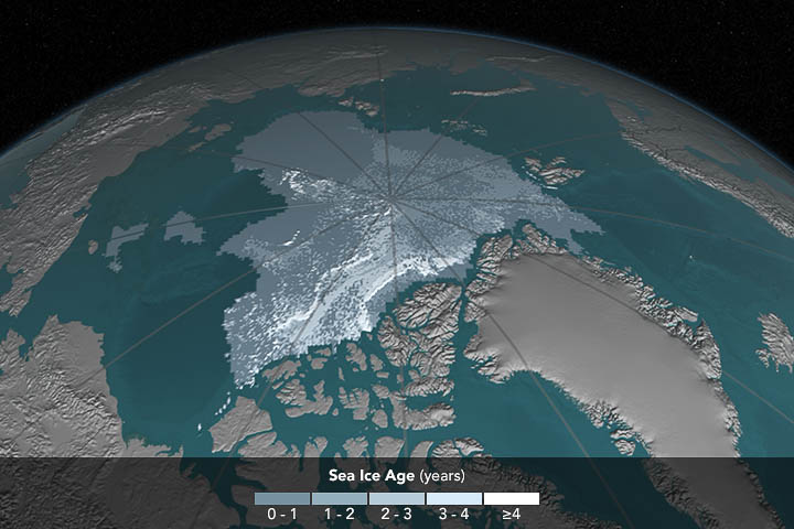 Scientists look to the Pacific Ocean to better predict when the Arctic will be ice-free