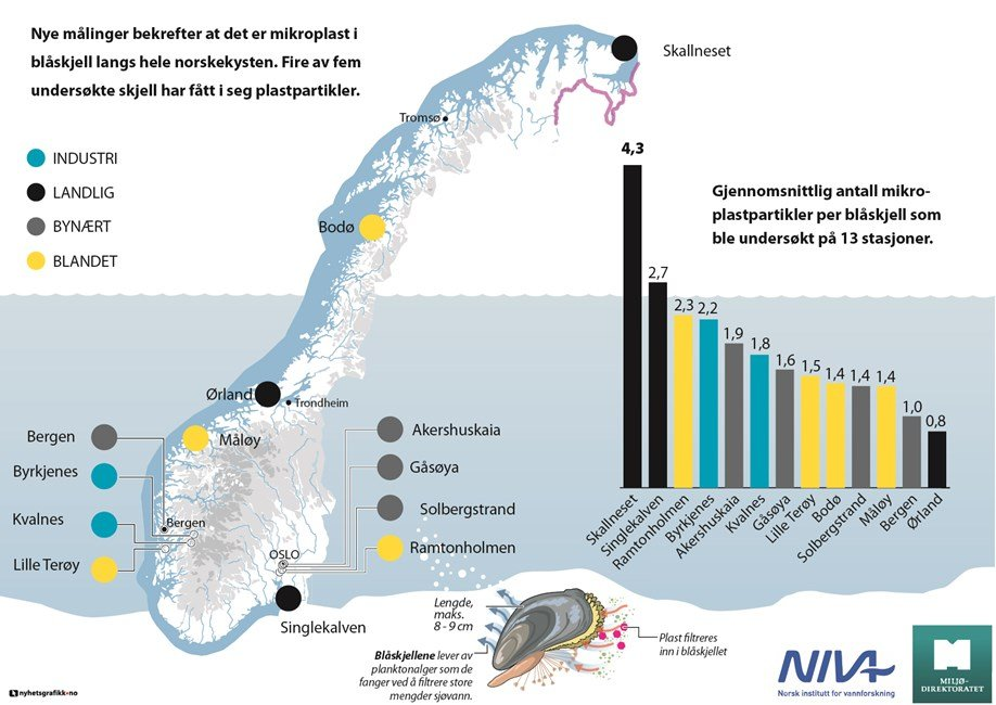 Researchers find high levels of microplastics on Norway's Arctic coast