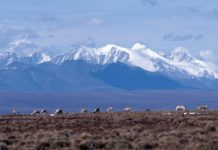 New revelations about ANWR's only test well cast doubt on oil prospects
