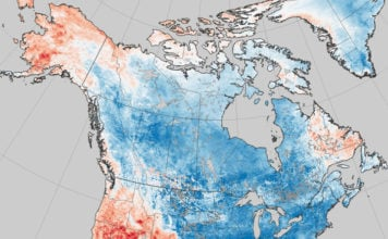 Is warming in the Arctic behind this year's crazy winter weather in eastern North America?
