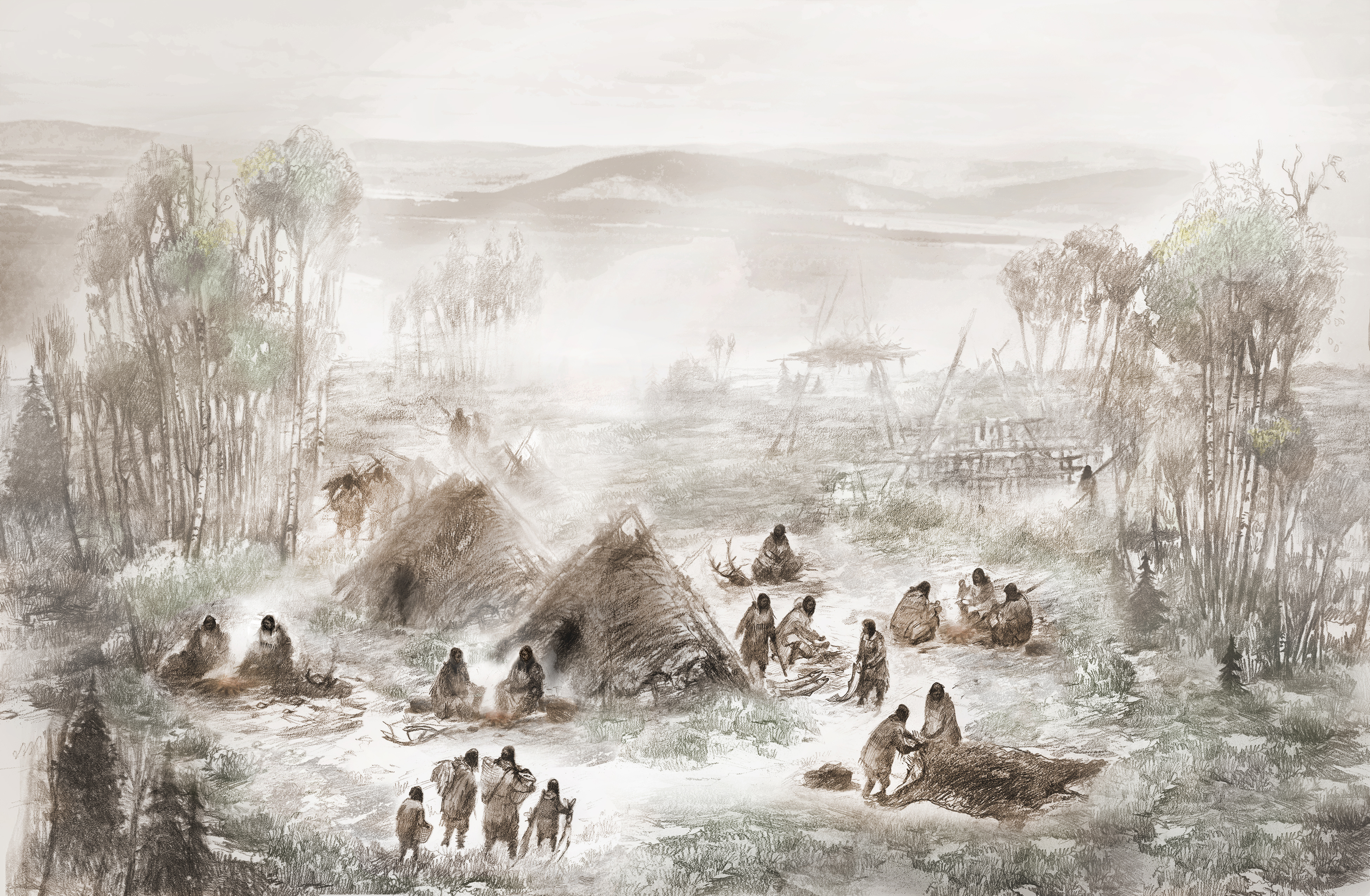 A scientific illustration of the Upward Sun River camp in what is now Interior Alaska. (Illustration by Eric S. Carlson in collaboration with Ben A. Potter)
