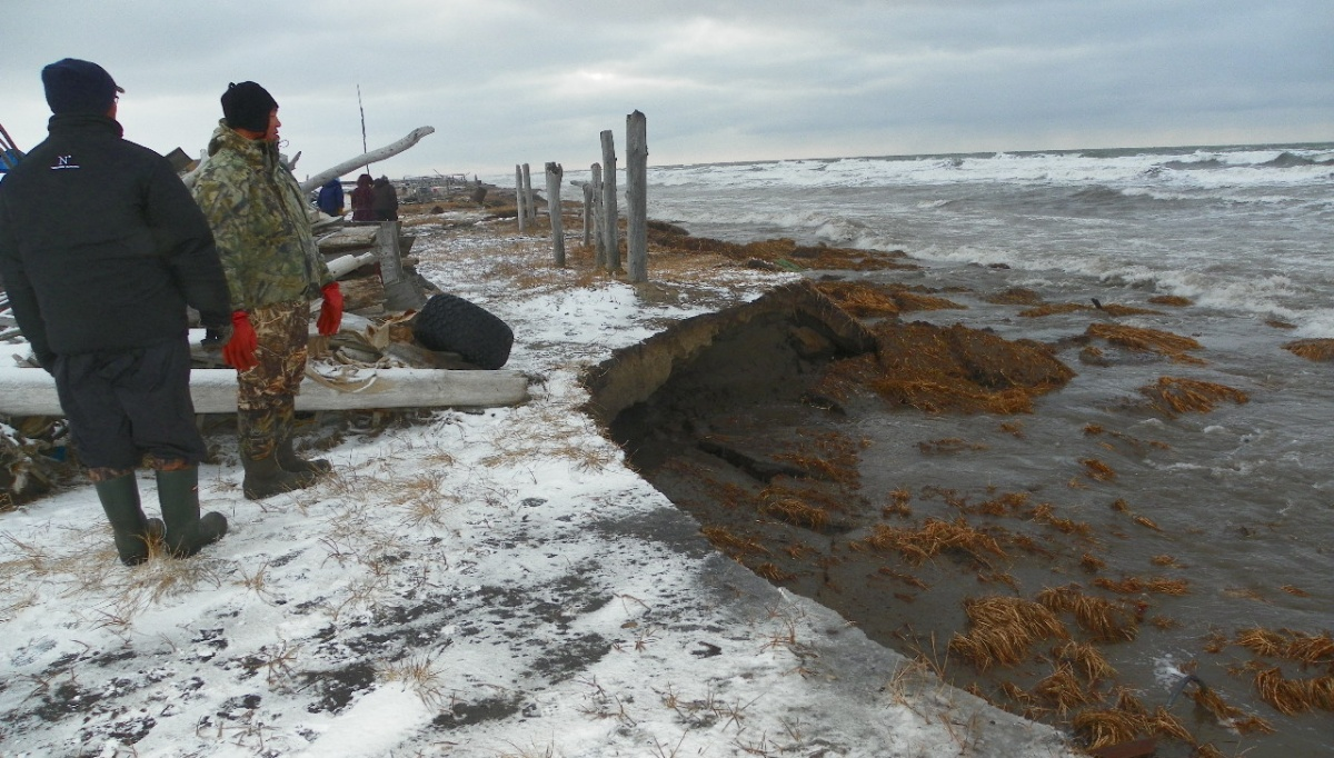 Residents of Shishmaref, Alaska, inspect coastal erosion. As sea ice declines, more nutrient-rich sediment from land can be transported to the open ocean where it changes the makeup of marine life. (U.S. Department of the Interior)