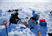 Arctic sea ice algae need less light to grow than researchers thought. Here's why that matters