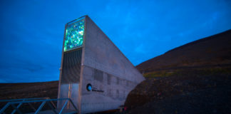 Svalbard's 'Doomsday' seed vault marks 10th anniversary with upgrades to protect it from climate change