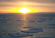 Why the US Interior Department's 'lease everything' approach to offshore oil drilling in Alaska backfired