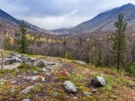 Russia's Kola peninsula gets a new national park