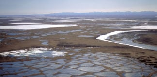Top Interior official promises speedy preparation for ANWR oil leasing