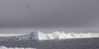 Study finds record amount of microplastics in Arctic sea ice