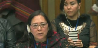 In UN address, Inuit org seeks recognition for Inuktut