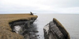 Arctic coastal erosion isn't just a byproduct of climate change — it also contributes to it