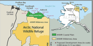 Busting the 2,000-acre myth about drilling in Alaska's Arctic refuge