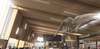 As Greenland's plans to build new airports gather momentum, Denmark is struggling to get on board