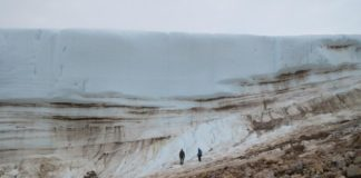 Small bugs point to surprising finding: ancient Greenland was warmer than once thought