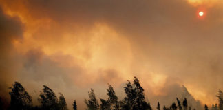 Arctic wildfires are on the rise — but we still know very little about their health effects