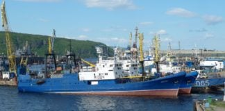Scientists advise slashing Barents Sea cod, haddock quotas