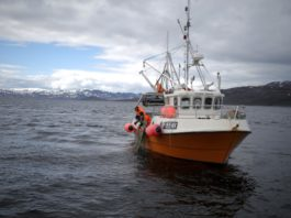 How a market-based fund could help prevent the tragedy of the commons in the Arctic's international waters
