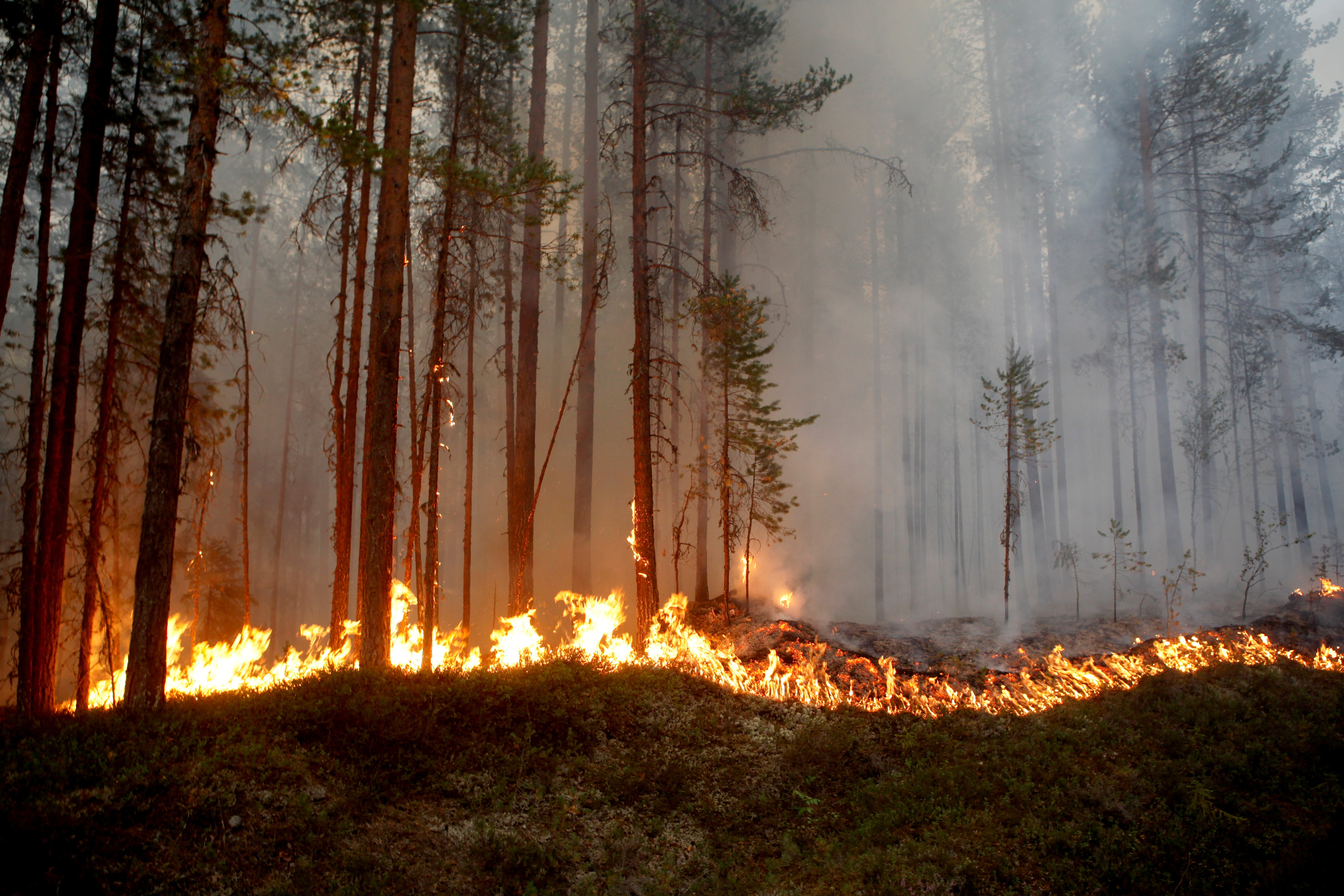 wildfires are burning through northern europe including in the